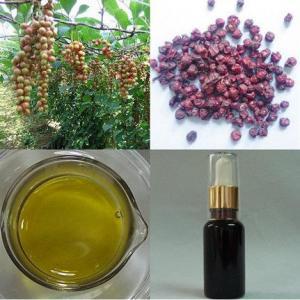 China Schisandra Oil Schizandrin B on sale