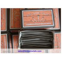 China bright polished common nails to UAE on sale