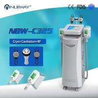 China Cryo +RF+ cavitation in one 5 handles Cryo fat freezing machine for Europe wholesale