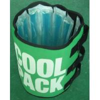 China Can Cooler Red Wine Cooler Beer Cooler Bottle Cooler Ice Pack Cool Pack (HC25) wholesale
