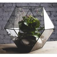 China art glass flower holder, terrarium planter, geometric glass terrarium wholesale