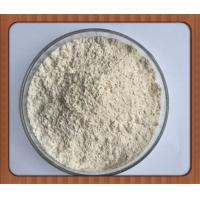 Odorless White Powder L-Epicatechin / Epicatechin For Muscle Building