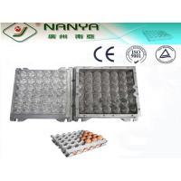 China PC Plastic / Aluminum Egg Tray Mould with CAD computerized sysytem wholesale