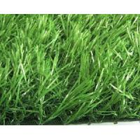 China Grass for Commercial Landscaping (1208) wholesale