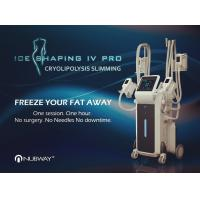 China 4 Cryo applicators together Fat Freezing Cryolipolysis Cool Body Sculpting Machine for fat removal wholesale