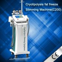 China Newest Zelitq Cryolipolysis Fat Dissolved Machine With Cold Wave Cooltherapy Beauty wholesale