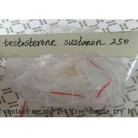 Testosterone Sustanon 250 For Muscle Building , Testosterone Blend Powder