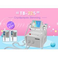 China Portable Home Use Cryolipolysis Fat Freeze Slimming Machine Color Screen Operating wholesale