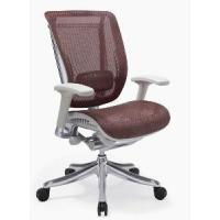 China Ergonomic Chair-Mesh Chair-Office Chair (FL-M02#) wholesale
