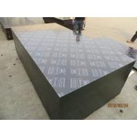 China KINGPLUS FILM FACED PLYWOOD,construction formply / concrete formplywood / formwork panel on sale