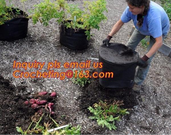 Quality wholesale felt grow bags 5,10,15,20 gallon Felt large plant bag, Promotion Handmade Innovative Product Mini Felt Grow Ba for sale