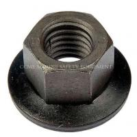 China Carbon Steel Bsp NPT Back Hex Pipe Nuts wholesale