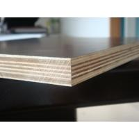 China film faced plywood concrete formwork used for construction / for bridge/for building wholesale