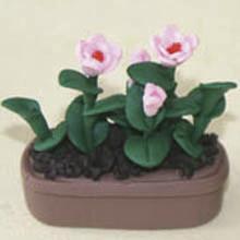 China Model Ceramic pot Flower CF44 wholesale