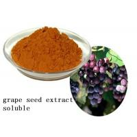 China Heart Health Natural Plant Extracts Proanthocyanidins OPC Soluble Grape Seed wholesale