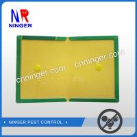 China Paper Board Rat and  Mouse Glue Traps Strong Adhesive wholesale