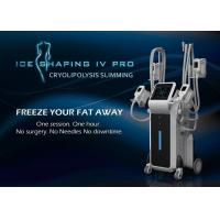 China CE TGA certification high efficient fat removal body shaping cryolipolysis apparatus for clinic use wholesale