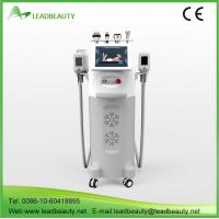 China kryolipolysis slim freeze belt 5 treatment head fat loss machine wholesale