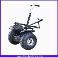 China TP005G Self balance electric Golf scooter mobility scooters moped 2000w motor for golf cart wholesale