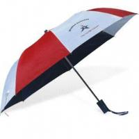 China 2-fold Auto Open Umbrella with Zinc-plated Metal Ribs wholesale