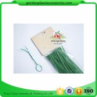 China Green Tree Climbing Garden Plant Ties , Plastic Tree Support Ties wholesale