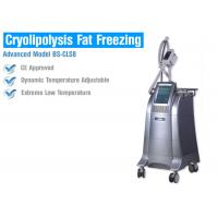 China Fat Burning Cryolipolysis Fat Freeze Slimming Machine , Fat Cavitation Machine For Men Women wholesale