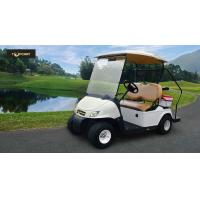 China High Safe Mini Electric Vehicle Single Seat Golf Cart With CE Certificate wholesale