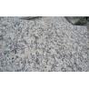 China Tiger skin Red Granite Tile for floor decoration wholesale
