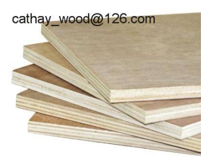 Quality Okoume, Poplar, Birch, Bintangore,Commercial Plywood for sale