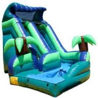 China Inflatable Commercial Speed Slide, Water Park Raft Slide, Custom Amusement Water Slides Equipment on sale
