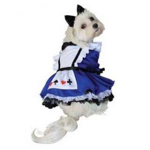 China Wholesale PET Costume Alice Dog Costume on sale