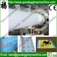 China EPE Foam Sheet Extruder(CE APPROVED FCFPM-170) wholesale