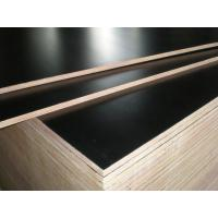 China hot sale low price good quality 9mm 11mm 12mm 15mm 18mm film faced plywood in Africa wholesale