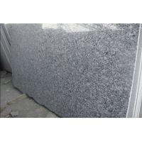 China Custom Natural Spary White granite countertop tile for kitchen , bathroom on sale