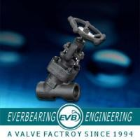 China Y-Type Forged Steel Globe Valve wholesale