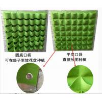 China Customized Size Plant Grow Bags Green Bags For Plants 6 Years Lifetime wholesale