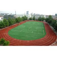 China Durable Premium Soccer Artificial Grass For University Soccer / Football Playground wholesale