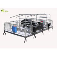 China Automatic Pig Farrowing Crate , Pig Farrowing Pen Modern System wholesale