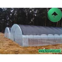 Poultry Feeding Greenhouse,Warm House, Plant House