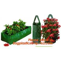 Plastic Hanging Growing Strawberry Bags Planter ,Hanging Strawberry Planter Bags,Strawberry Planter