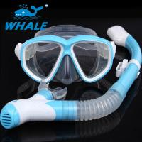 Quality Watertight Anti Fog Lens Diving Mask Set Dry Top Snorkel Tempered Glass for sale