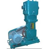 China WLW-150 oil-free reciprocating vacuum pump on sale