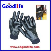 China Goodlife N8041 with side whipstitch PVC Nitrile Gloves wholesale