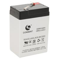China 6v 4ah battery,6 volt 4ah rechargeable battery wholesale