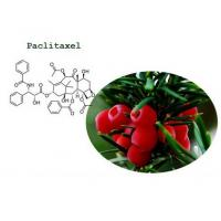 Paclitaxel Onxal Body Building Supplements For Anti - Cancer , CAS 33069-62-4