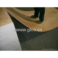 China Birch Plywood on sale
