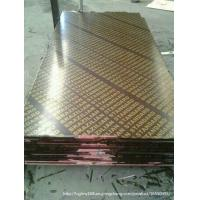 China Brown / Black Film Shuttering Plywood 12mm - 21mm wholesale