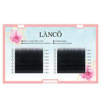 China Individual Volumizing Lash Extensions Camellia 0.05mm Fast Blooming In One Second wholesale