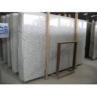 Granite Tile & Slab / Countertop/ Slab