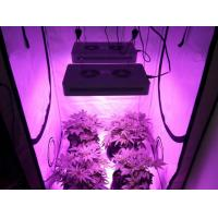 Blooming led grow light 200pcs 3w epistar led plant use